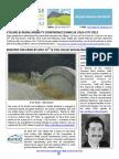 Velo Village Newsletter #2