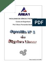 Algebra Linear Apostila 3a[1]