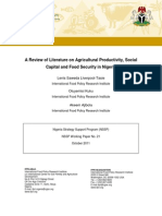 A Review of Literature on Agricultural Productivity, Social Capital and Food Security in Nigeria