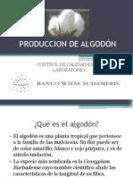 PRODUCCION DE ALGODÓN