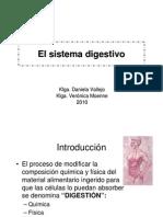 clase 13, sistema digestivo