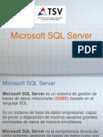 2-Microsoft SQL Server