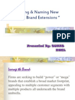 Introducing and Naming New Products & Brand Extensions-8