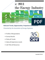 Survey of the Green Energy Industry 2011