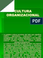 Culturaorganizacional