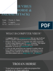 Computer Virus (Trojan Horse & Salami Attack)