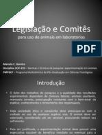 SEMINÁRIO - Legislação e Comitês