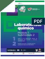 Guia Formativa, Laboratorista Quimico. CECyTEH. Gobierno de Hidalgo
