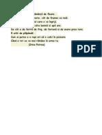 COPILUL - IRINA PETREA