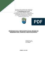 Proyecto Metacognitiva