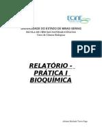 relatorio_bioquimica