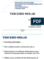 seminário do 3 molar