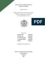 format laporan pengleab