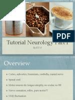 tutorialneuro1