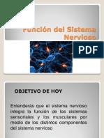 Anato Del Sist26-3