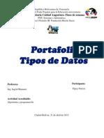 Tipos de Datos Port a Folio Gipsy
