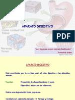 Aparato Digestivo 1a Parte