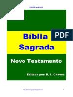 Biblia Sagrada Novo Testamento 2012 R S Chaves PDF