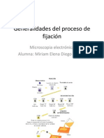 Generalidades del proceso de fijación (2)
