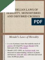 Mendels Law
