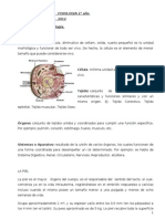 Apunte 1 Piel - fisiologia 2012