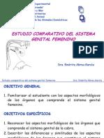 Sistema Genital Femenino-comparada