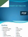 Anatomy Topography of the Eye