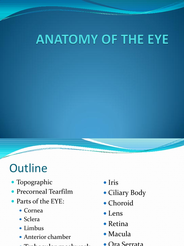 Anatomy Topography of the Eye | Cornea | Human Eye