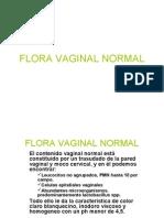 7250723 17 Flora Vaginal Normal