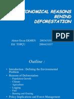 Deforestation ion - Env. Econ.