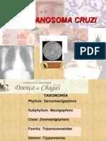T.cruzi