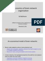 The Economics of Brain Network