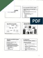 Spondilartropatiile Seronegative0001