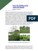 La Agricultura y los Árboles en los Paisajes Agrarios del Mundo