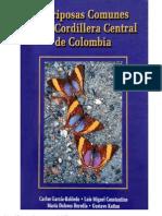 Garcia-Robledo Carlos Mariposas Comunes de La Cordillera Central de Colombia