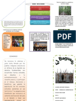 Folleto Del Baguazo 1