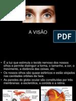 A_VISÃO