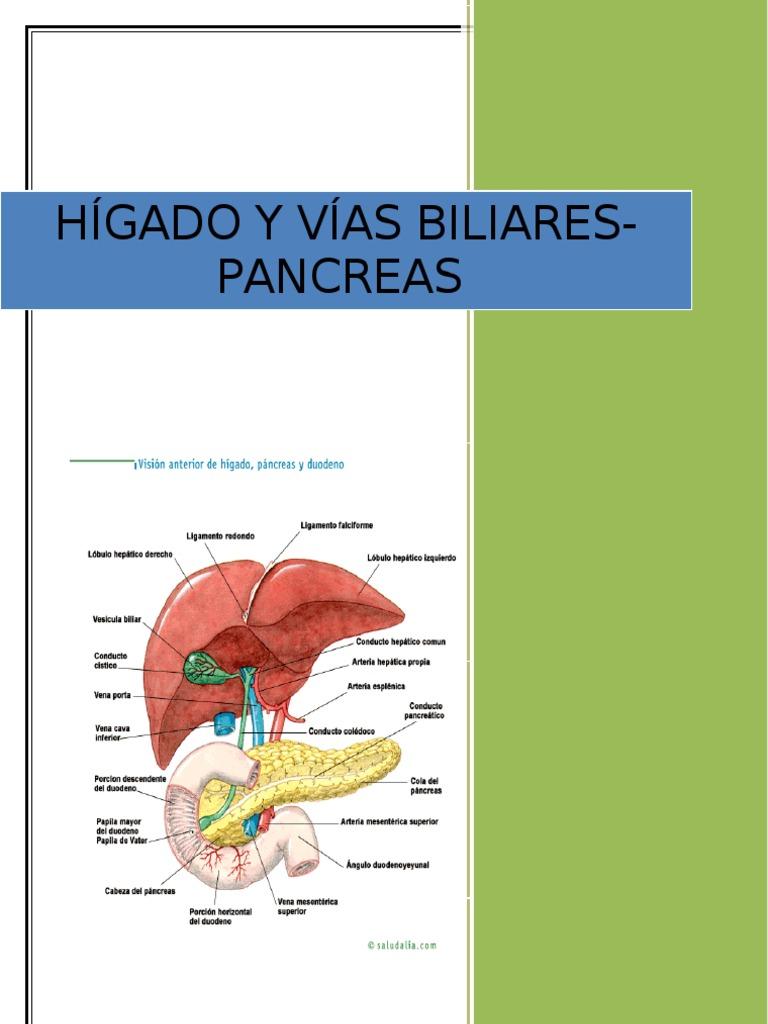 Higado, Vias Biliares y Pancreas.doc