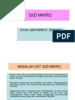 GIZI-MIKRO-LEBIH
