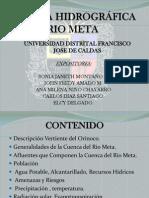 CUENCA HIDROGRÁFICA RIO META