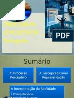 psicpercepao-100124171830-phpapp02