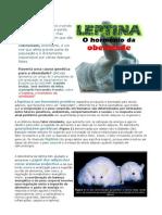 Artigo Leptina