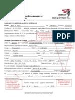 Modelo Formul. Bach_2010.pdf