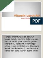 As.pantotenat,Kolin,Biotin - Kel.12