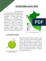 Principales Ecosistemas en el Perú