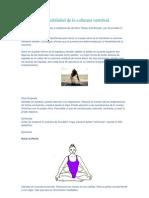 Serie Para La Flexibilidad de La Columna Vertebral