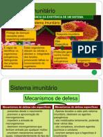 Sistema imunitário - II