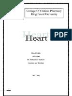 Heart-211515980 (1)