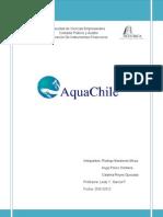 Análisis AquaChile