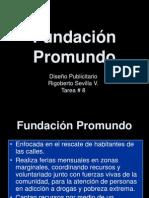 Fundación Promundo
